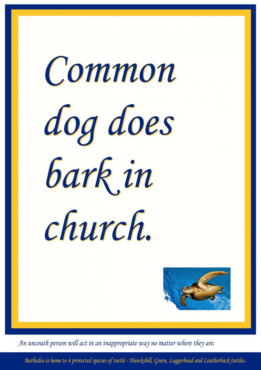 Common Dog