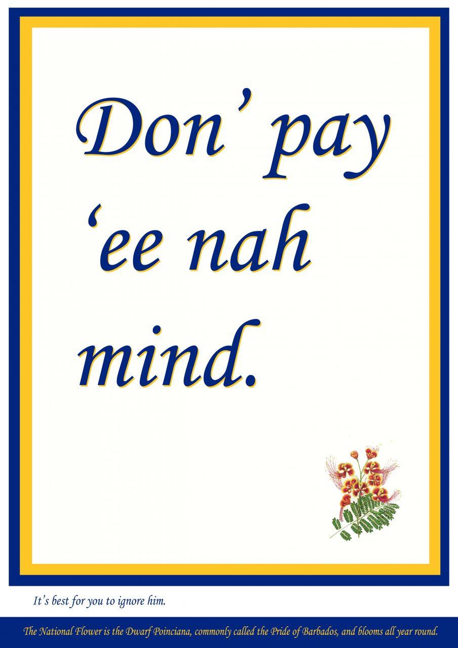 Don't pay ee nah mind